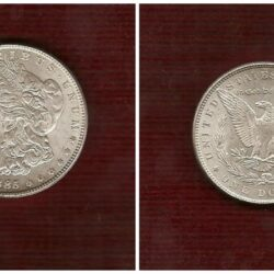 Morgan Dollar -Argento -KM 110 – 26.7300 gr. – 0.9000 Silver – 0.7734 oz. ASW – 38.1 mm.