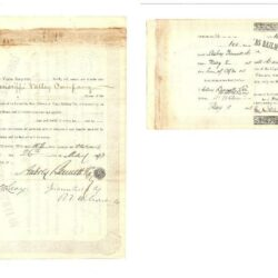 Scripophily Louisville, New Orleans & Texas railway Co. 1888