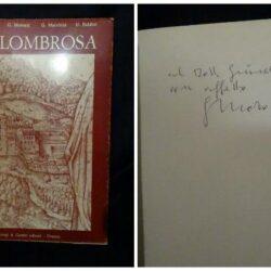 Vallombrosa – R.N. Vasaturo – G. Morozzi – G. Marchini – U. Baldini – Giorgi & Gambi editori – Firenze 1973