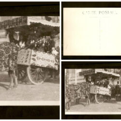 Cartolina Sardegna, carro sardo – non viaggiata