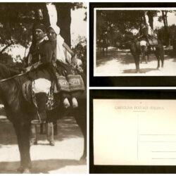 Cartolina Sardegna coppia a cavallo – non viaggiata