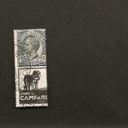 Regno d'Italia 1924 Re Vittorio Emanuele III -15c. Cordial Camapari  –  usato