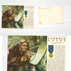 Cartolina Medaglie d'oro N°30