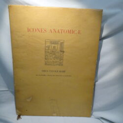 Icones anatomicae Dieci tavole rare di antomia umana da Vesalio a Caldano Tosello Editore Padova 1953